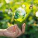 empresas_ecologicas