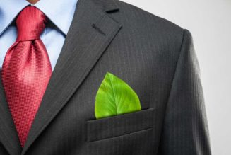 Organizaciones que cuidan al medio ambiente en México