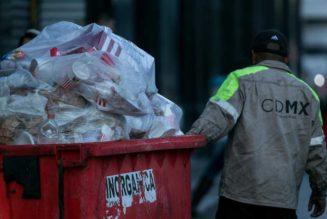 Van por bolsas compostables, no 'patito'