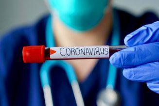 los pocos casos coronavirus