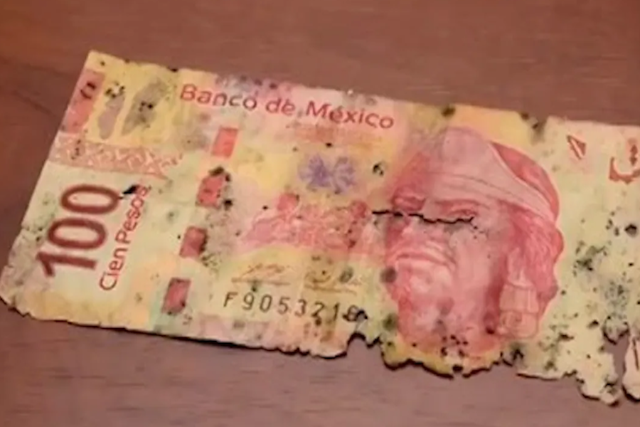 El hundimiento de la economía mexicana