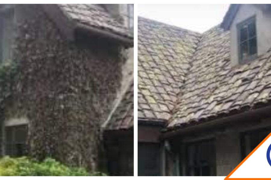 #Viral: Graba casa embrujada y se hace viral… ¡Ay nanita!