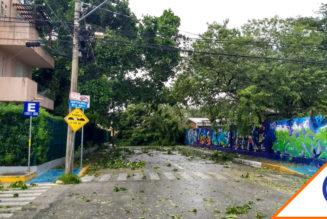 #Huracán: Delta deja apagones y árboles caídos en Quintana Roo