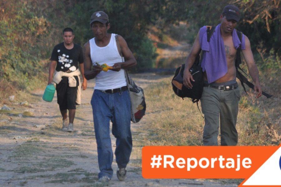 #Reportaje: Falta de empleo en AL y Estados Unidos pegó a migrantes por igual