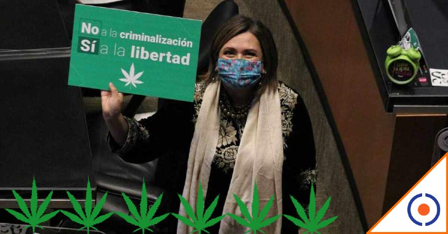 #SacatitoPalConejo: Dan luz verde al uso recreativo de la marihuana en México