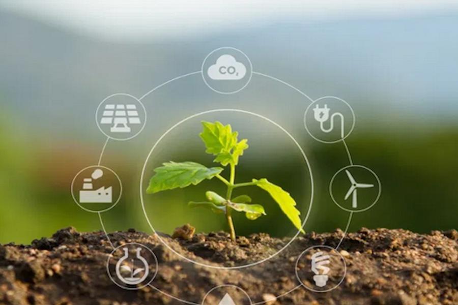 ¿Qué son las inversiones sustentables?
