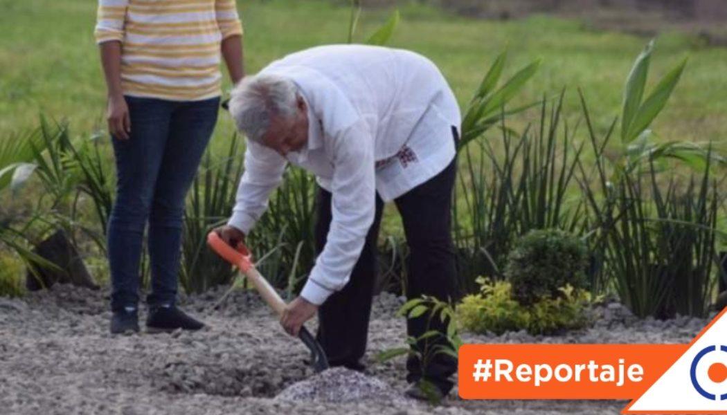 #Reportaje: Programas sociales sin objetivos claros, reciben millones de pesos