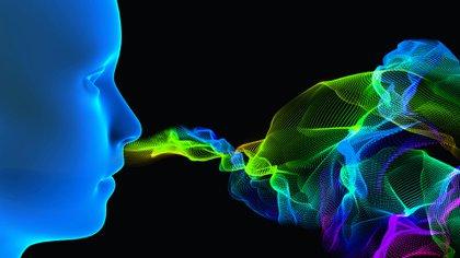 El amor nos entra por la nariz