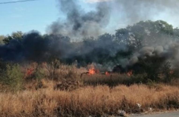 """CFE reservó causas del apagón en diciembre para evitar una """"revuelta social"""""""